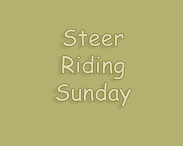 WOS 2018 Steer Riding Sunday