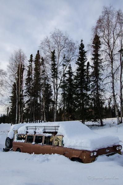 USA-Alaska-arctic-circle-2401.jpg
