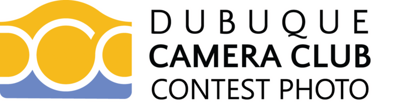 DB January 2017 - No Submissions - Judging