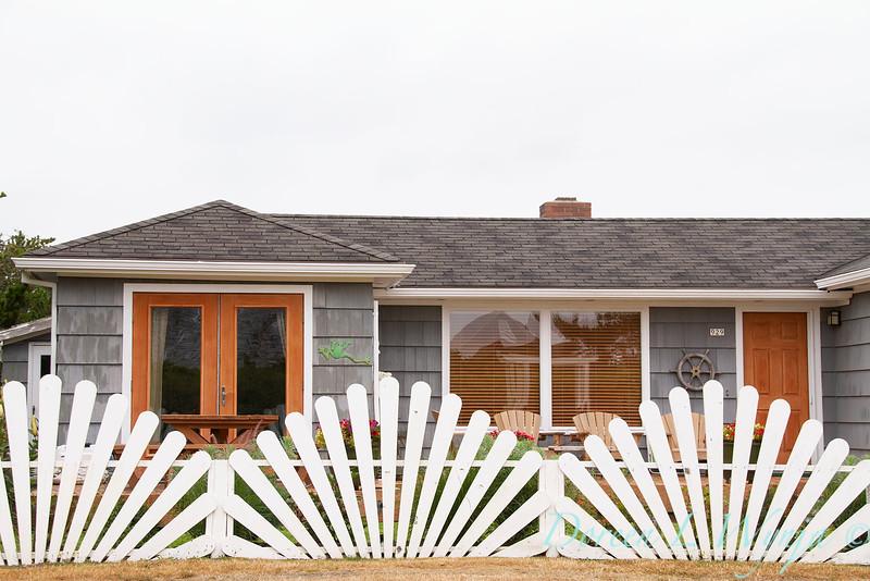 White picket fence shell pattern_1943.jpg