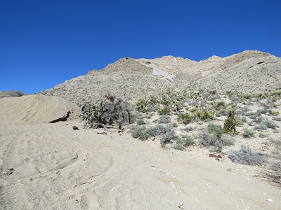 Abandoned Mines Explore