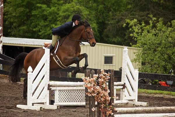 Bucks County Horses