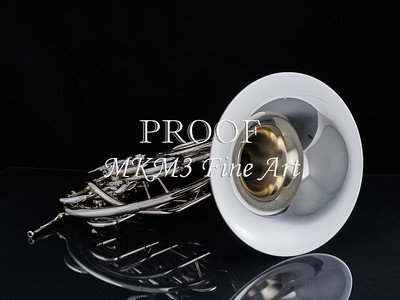 Nickel Silver French Horn 2059