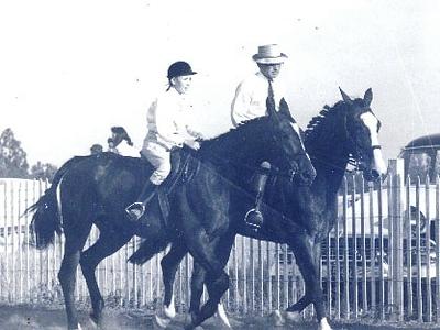 horse tom dooley.JPG