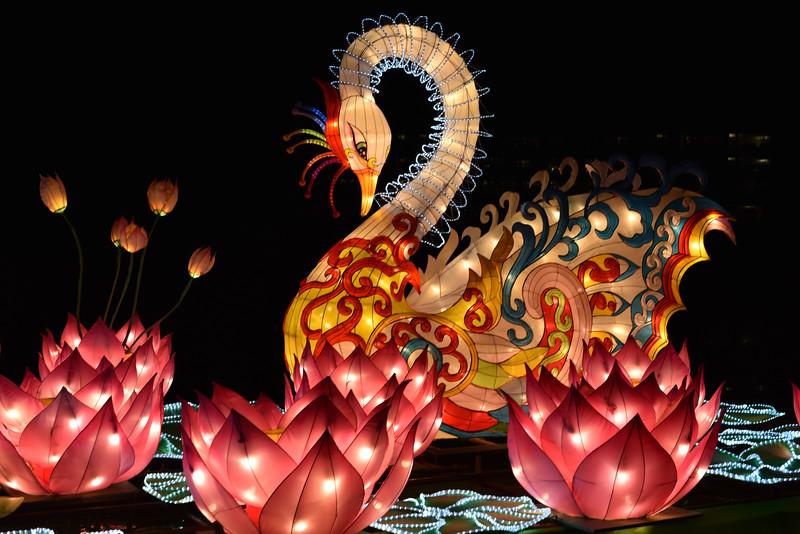 Chinese Lantern Festival-5296.jpg