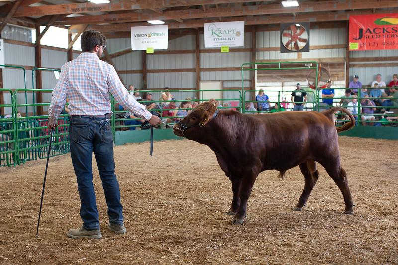 BeefShow-94.jpg