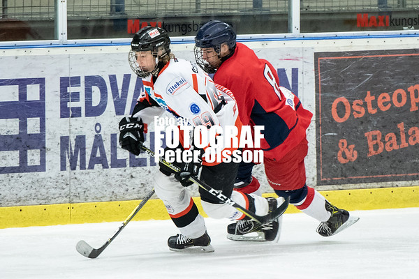J18 Playoff Elit 2019-02-23 Hanhals Kings - Olofström