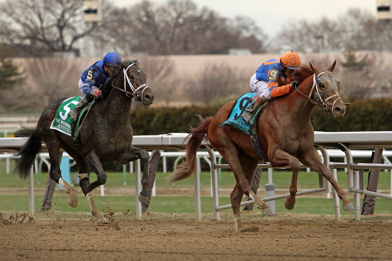 Vino Rosso (Curlin) and jockey John Velazquez win the Wood Memorial (Gr II) at Aqueduct Racetrack 4/7/18. Trainer: Todd Pletcher. Owner: Repole Stable and St. Elias Stable
