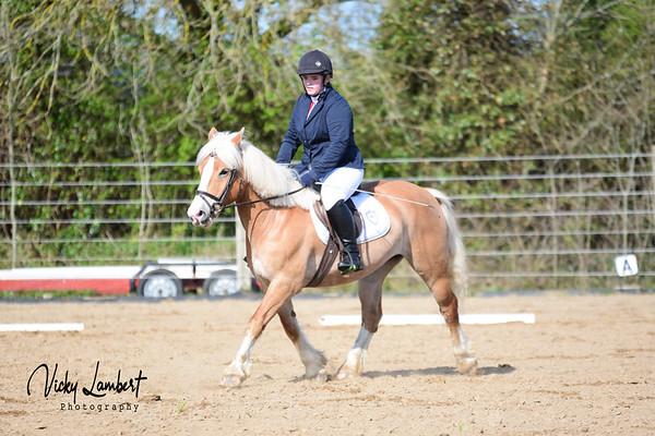 Cheval Riding Club Dressage League Final
