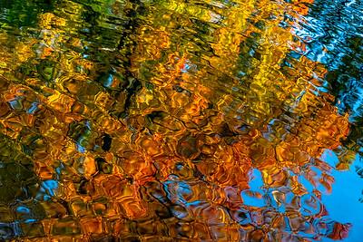 Berlin | Fall Reflections
