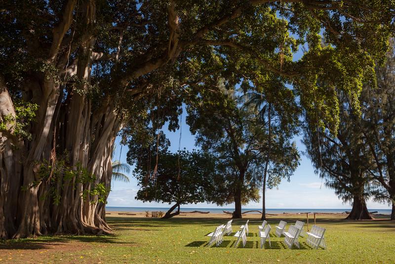 stout-kauai-wedding-24.jpg