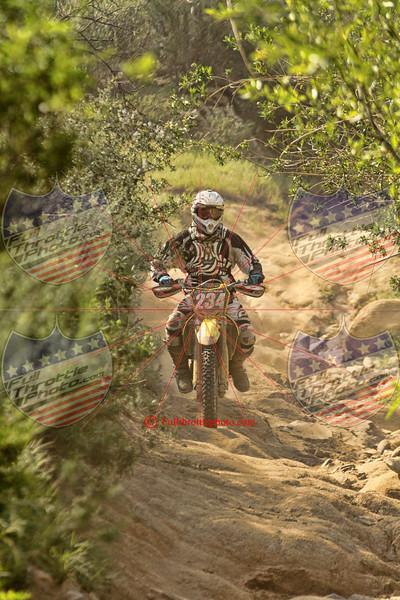 Rider 234