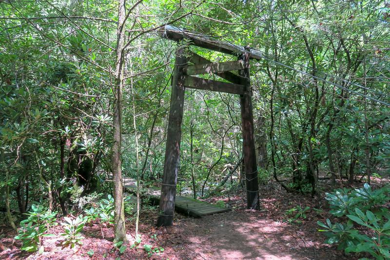 North Mills River Trail (Crossing #3) -- 2,270'