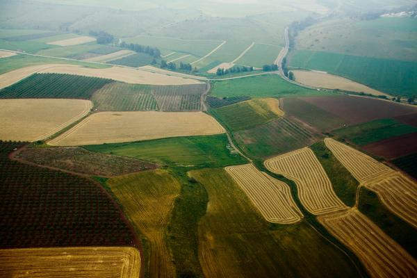 Agriculture in Israel - חקלאות בישראל