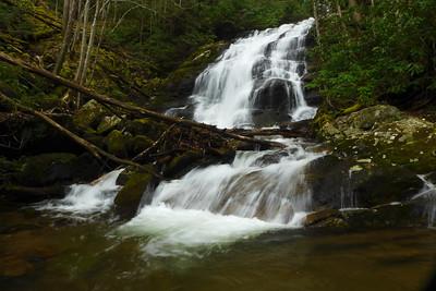Lower Higgins Falls