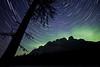 """Cosmic Tree"", Castle Mountain, Banff National Park, Alberta, Canada."