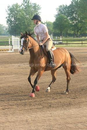 CEH Horse Training