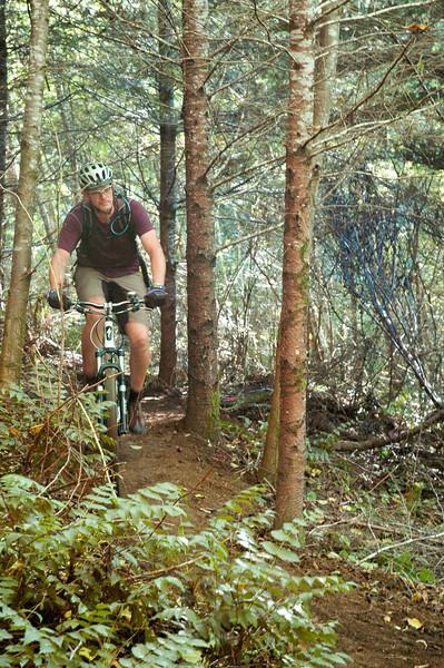 Sampling the new trail