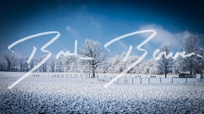 snow-77.jpg