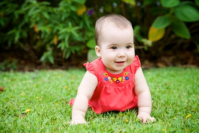 Jewell Family- Charlotte 6 months