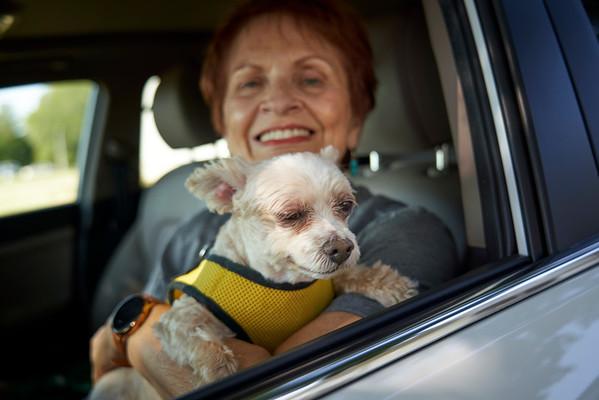 Knox County Human Society Car Ride September 18, 2021
