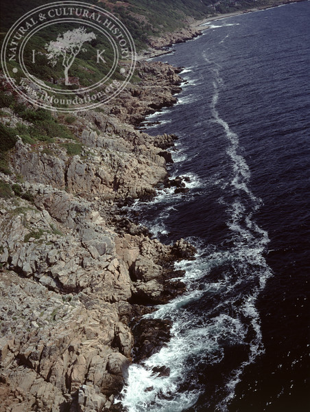 Kullen peninsula, Kullaberg south (1990) | PH.0077