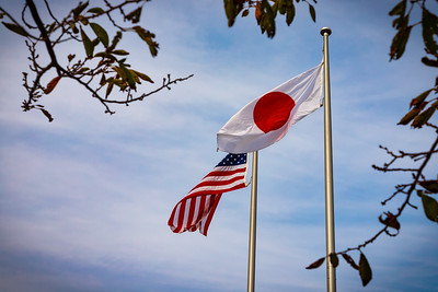American Japanese Flags 2