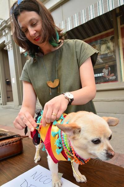 Downstreet Art Dogs - 083018