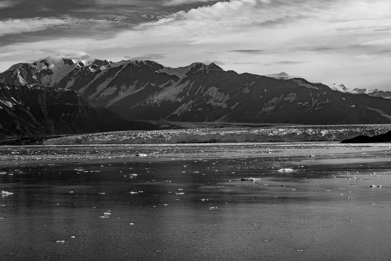 2017-08-10-Glacier-Bay-NP-185.jpg