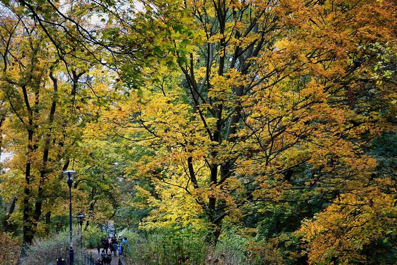 13-09Fall-Prague-85-Edit-2.jpg