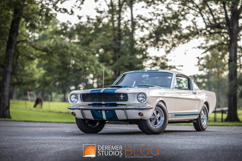 2019 RM - 1966 Shelby Mustang GT350 019A - Deremer Studios LLC