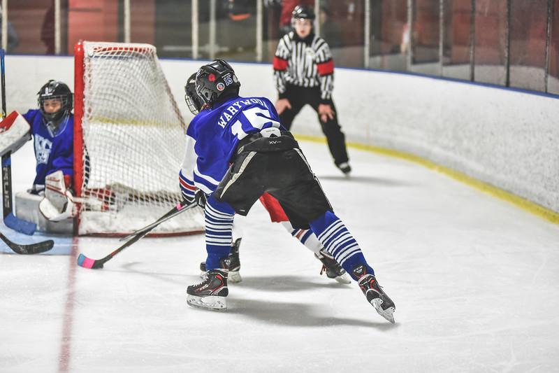 Leafs-29.jpg