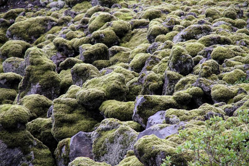 Iceland (134 of 149).jpg