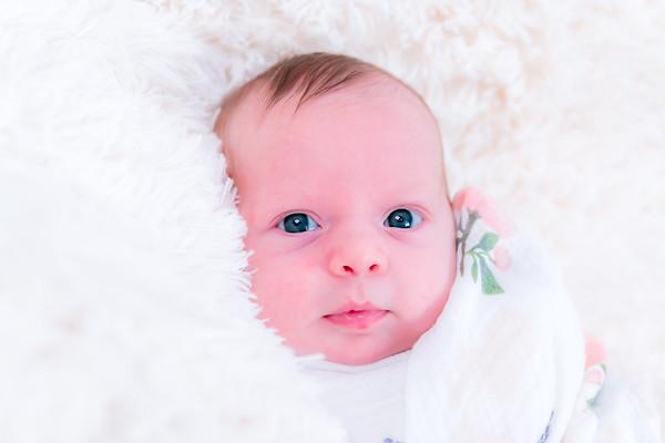{Isabel's Newborn Session}