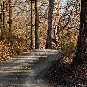 Middleburg Backroads