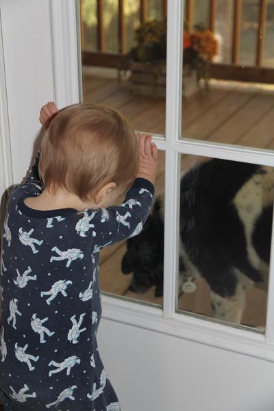 watching Bessie have a treat