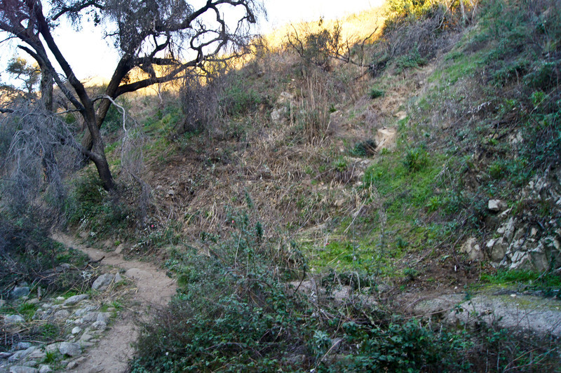 20120113008-El Prieto Trailwork Prep.jpg
