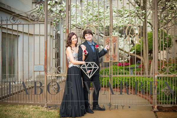 Dalton and Skylar ~ Prom 2015