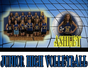 JH Volleyball Collages