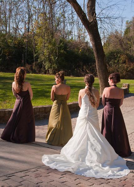 Royer Wedding, Stone Arch Bridge Lewistown, PA img_5965D.jpg