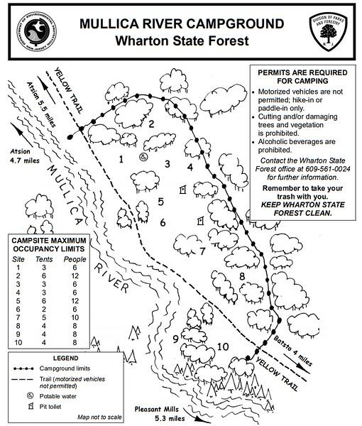 Wharton State Forest (Mullica River Campground)