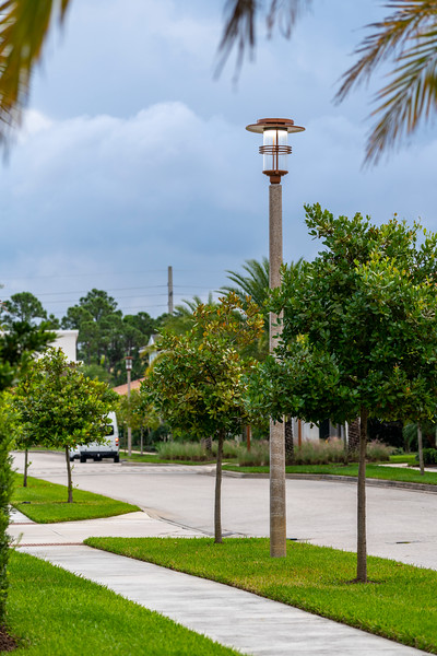 Spring City - Florida - 2019-148.jpg