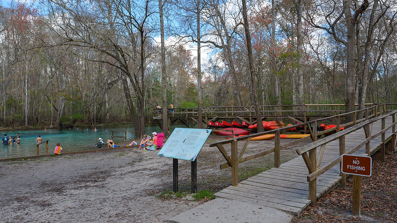Boardwalk with kayaks under it