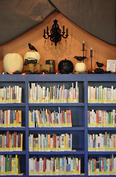 bookshelf display.jpg