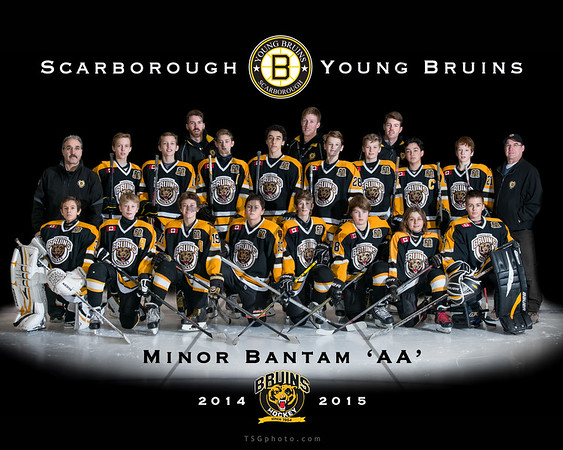 2014-14 SYB Minor Bantam 'AA'