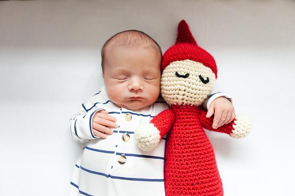 Oliver Finn's Newborn Portraits