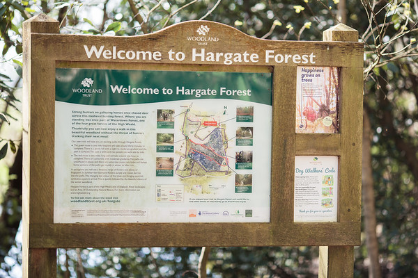 2018 - Hargate Forest walk 002
