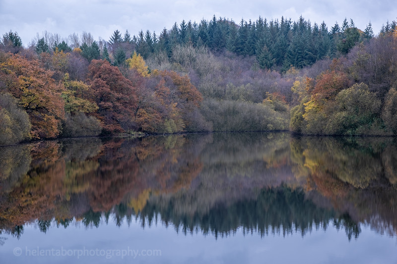 Eavestone Lake, 9 Nov 19-41.jpg
