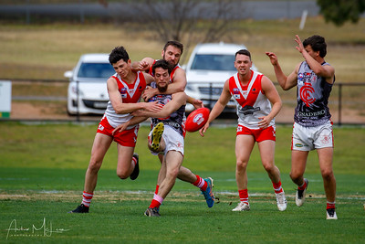 Swans Semi Final - Reserves