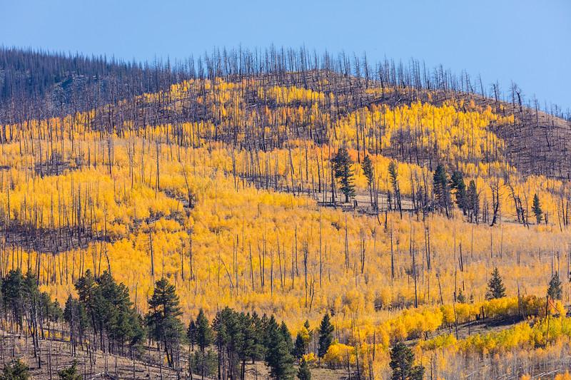 Colorado19_5D4-1511.jpg
